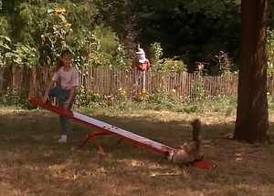 Screenshot from Homeward Bound